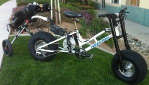 Fortune Hanekamp Golf-E-Bike